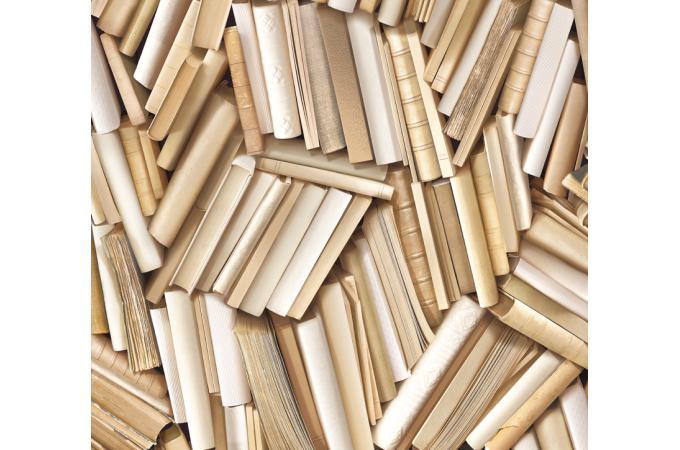 papier peint biblioth que chaotique ivoire papier peint. Black Bedroom Furniture Sets. Home Design Ideas