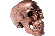 Tirelire Skull Cuivre Antique - Tirelire design
