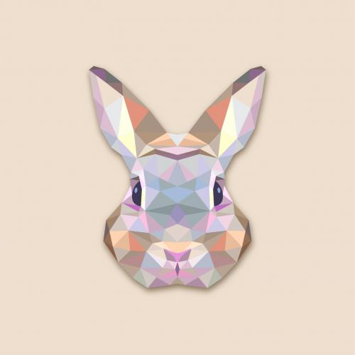 Tableau Animaux Lapin 50X50