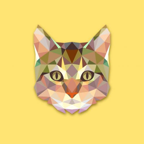 Tableau Animaux Chat Jaune 50X50