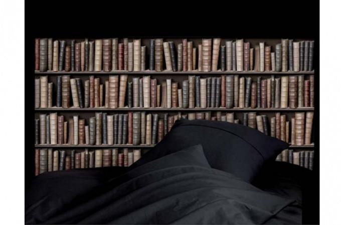 papier peint biblioth que papiers peints trompe l 39 oeil pas cher. Black Bedroom Furniture Sets. Home Design Ideas