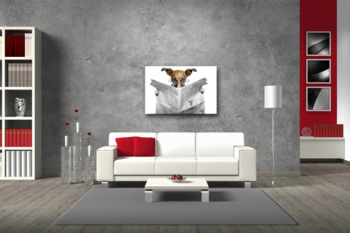 Tableau Animaux multicolore