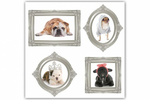 tableau baroque enfant portrait 4 chiens 80x80 cm tableaux animaux pas cher. Black Bedroom Furniture Sets. Home Design Ideas
