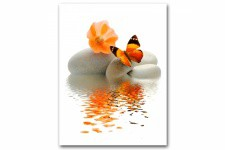 Tableau Zen Papillon Orange Sur Galet L.55 x H.80 cm - Decoration murale design