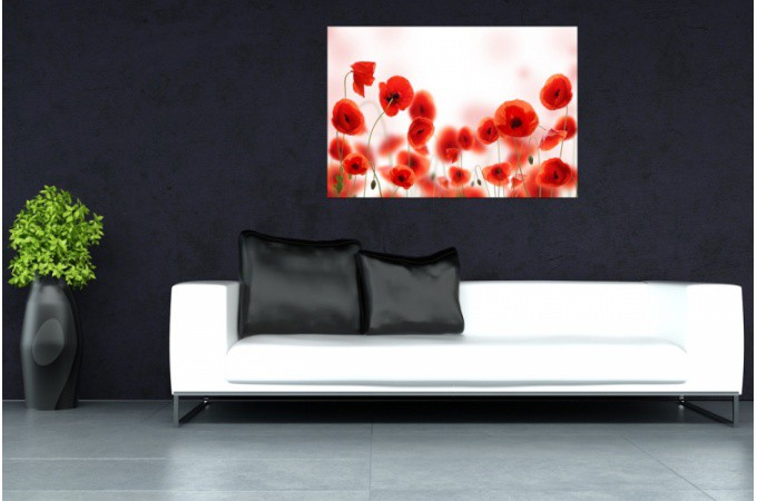 Tableau floral parterre de coquelicot 80x55 cm tableaux - Tableau rectangulaire zen ...