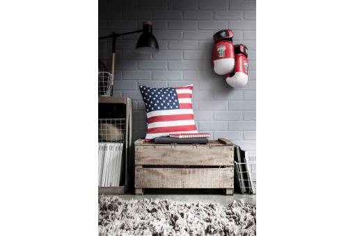 Coussin 38x38 BEST FLAGS US Dream