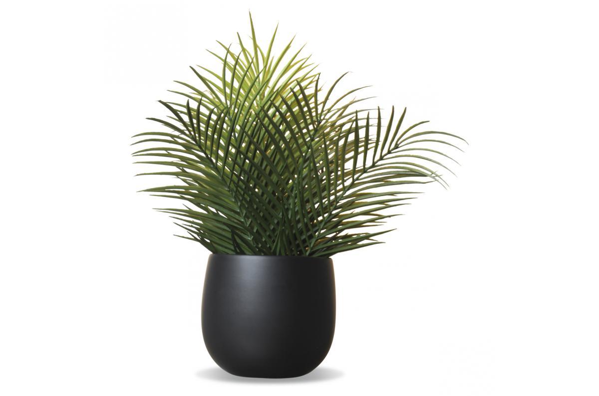 Pot De Plante Pas Cher fougère artificielle pot en céramique noir flower plus d'infos