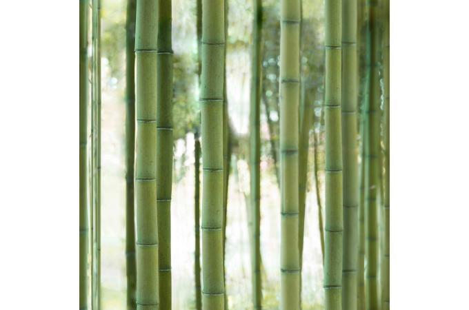 papier peint bamboo forest papier peint zen pas cher. Black Bedroom Furniture Sets. Home Design Ideas