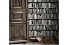 Papier Peint Livres Bibliotheque papiers peints trompe l'oeil pas cher - papier peint bibliothèque