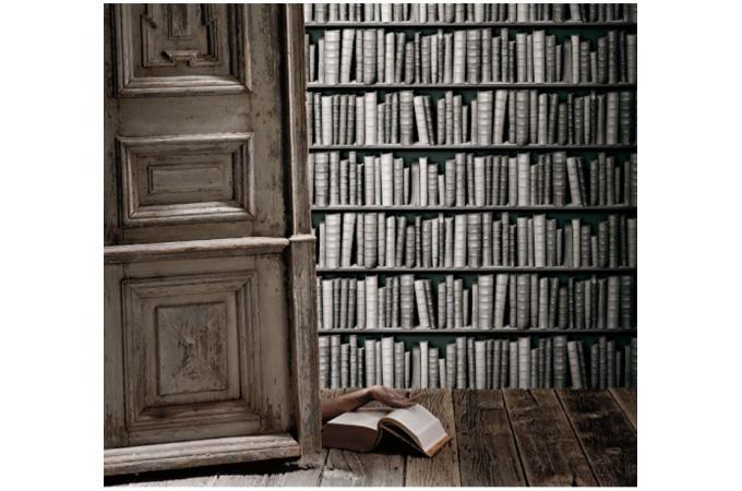 papier peint biblioth que grise papier peint trompe l. Black Bedroom Furniture Sets. Home Design Ideas