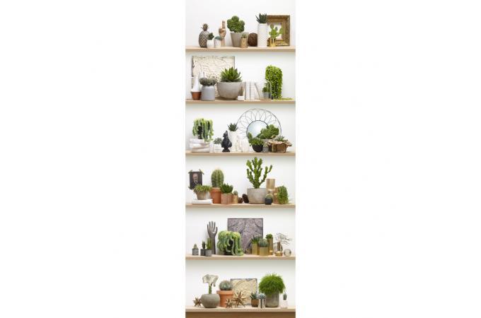 papier peint l unique etag res de cactus shelf papier peint zen pas cher. Black Bedroom Furniture Sets. Home Design Ideas