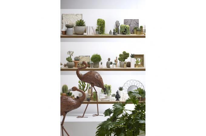 Papier Peint Style Trompe Lœil Etagères De Cactus Shelf Papier