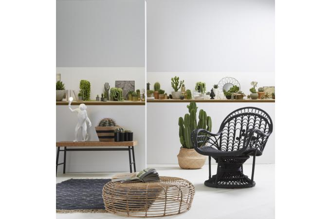 papier peint style trompe l 39 il etag res de cactus shelf. Black Bedroom Furniture Sets. Home Design Ideas