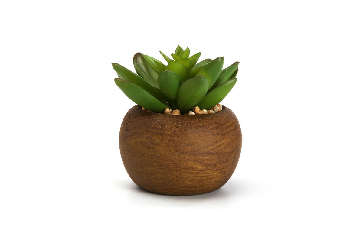 Pot De Plante Pas Cher plante artificielle en pot seafield plus d'infos