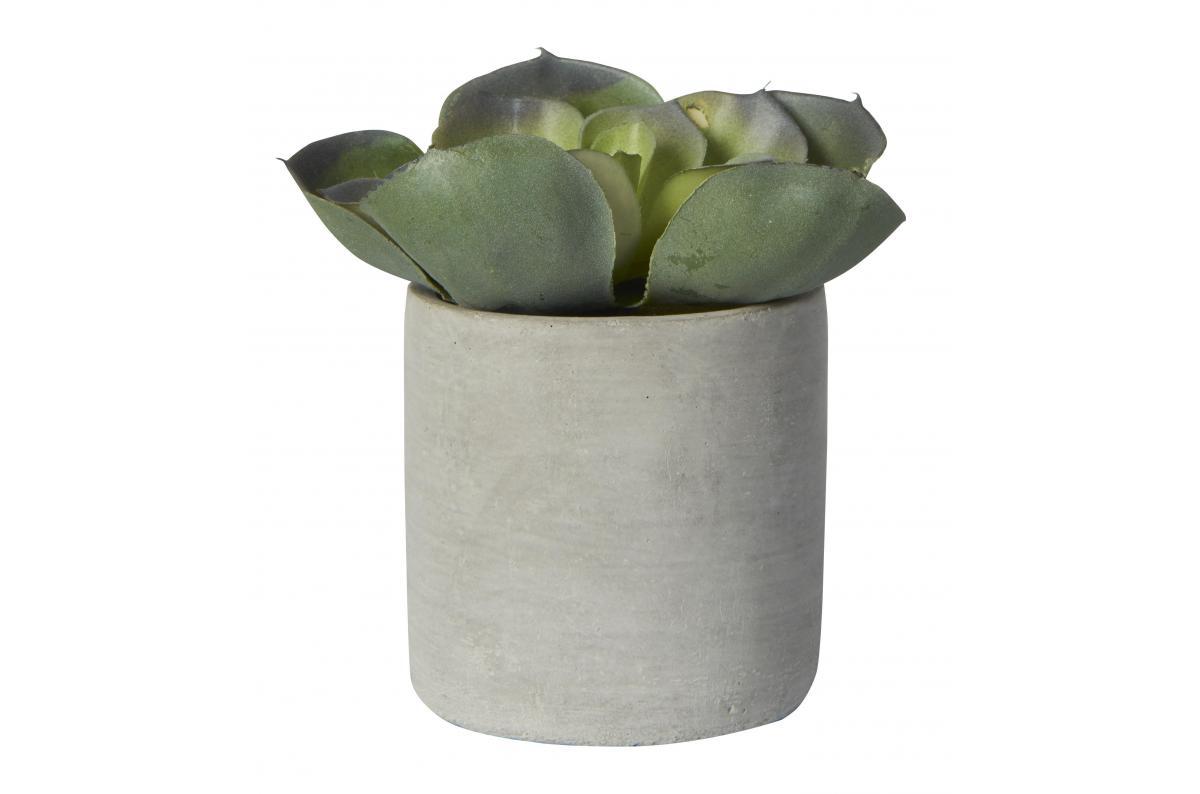 Pot De Plante Pas Cher pot plante béton chuy plus d'infos
