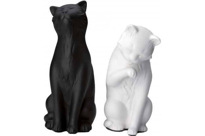serre livres 2 chats noir blanc