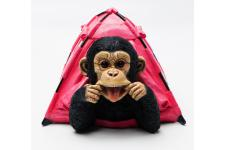 KARE DESIGN - Tirelire Holiday Monkey FUNK - Tirelire design