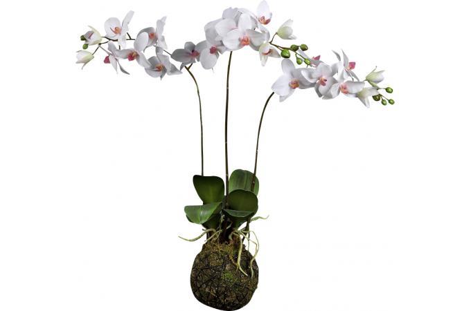 plante artificielle suspension triple phalaenopsis plantes artificielles pas cher. Black Bedroom Furniture Sets. Home Design Ideas